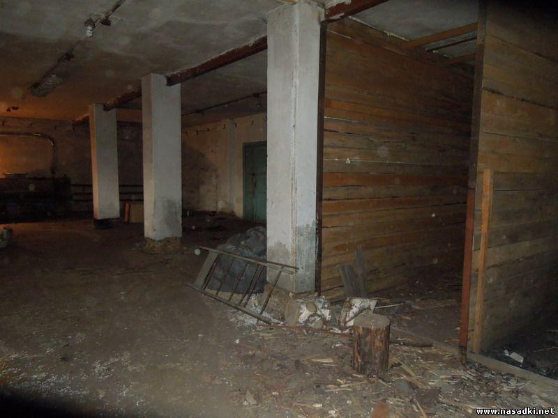 Будущее производство опарыша на Алтае