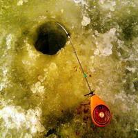 Ловля плотвы зимой в оттепель