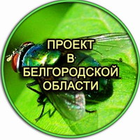 Проект по производству опарыша в Липецке