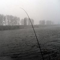 Ловля леща зимой на фидер