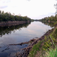 Речная плотва - выбор места ловли и снасти
