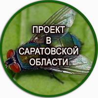 Производство опарыша в Саратове