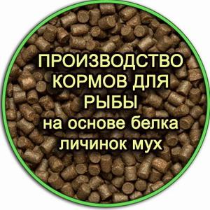 Бизнес по производству кормов для форели, осетра и сома