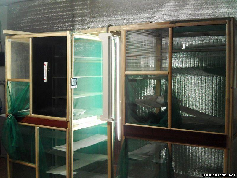 Клетки для содержания мух в цеху по разведению опарыша 2012 год
