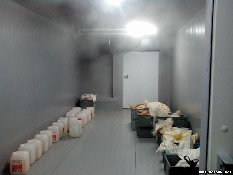 Морозильная камера на производстве опарыша в Саратове