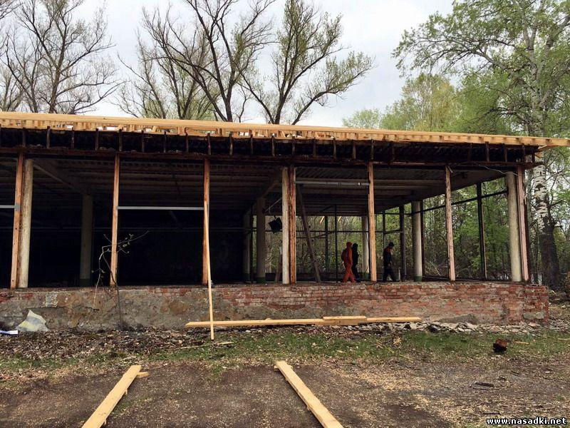 Строительство завода по выращиванию опарыша в Саратове
