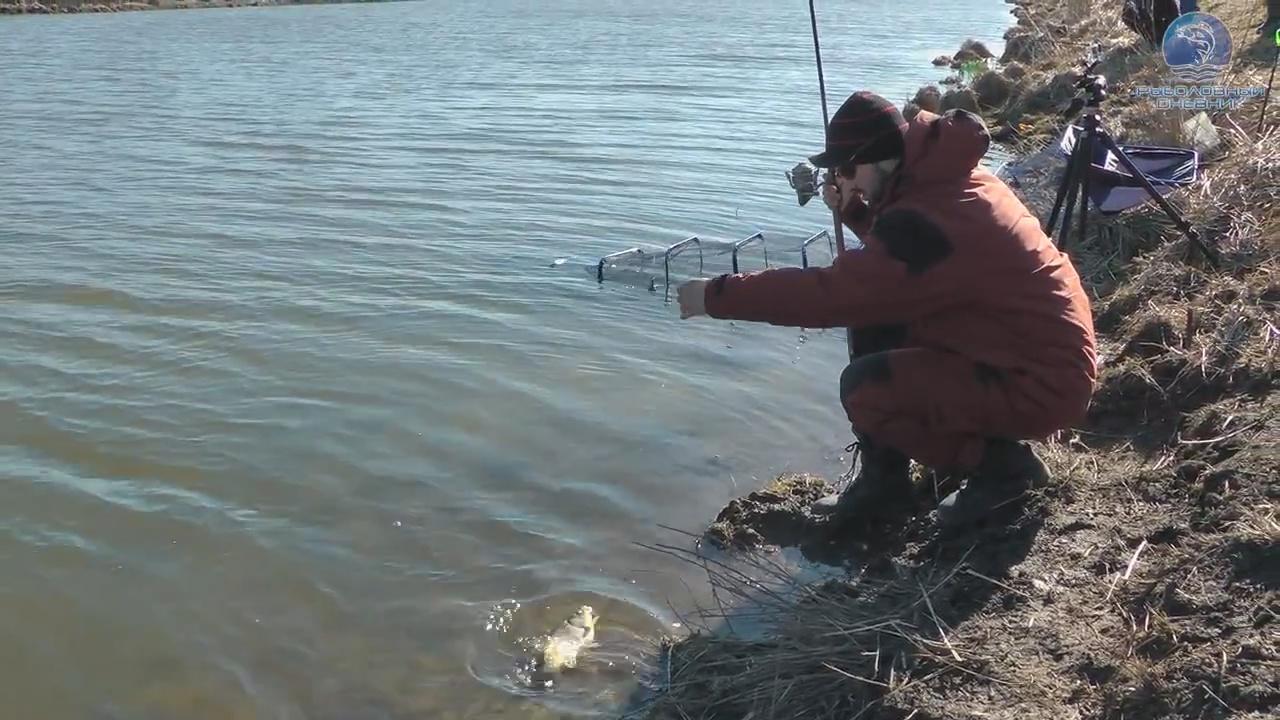 ловля фидером весной видео в стоячей воде