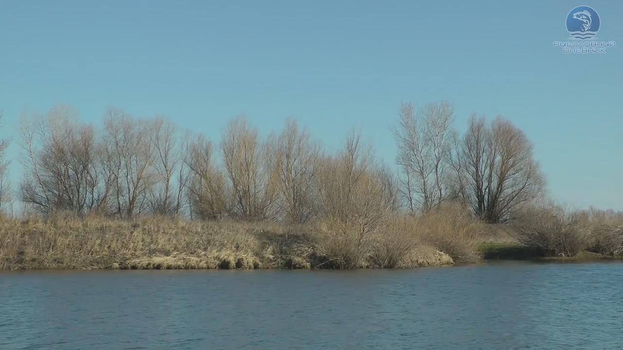 Весенний карасиный водоем