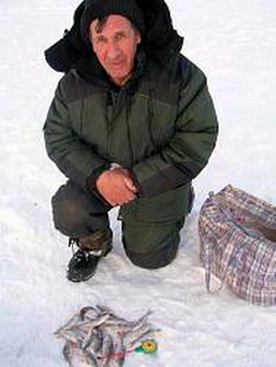 рыбак на льду с уловом окуней