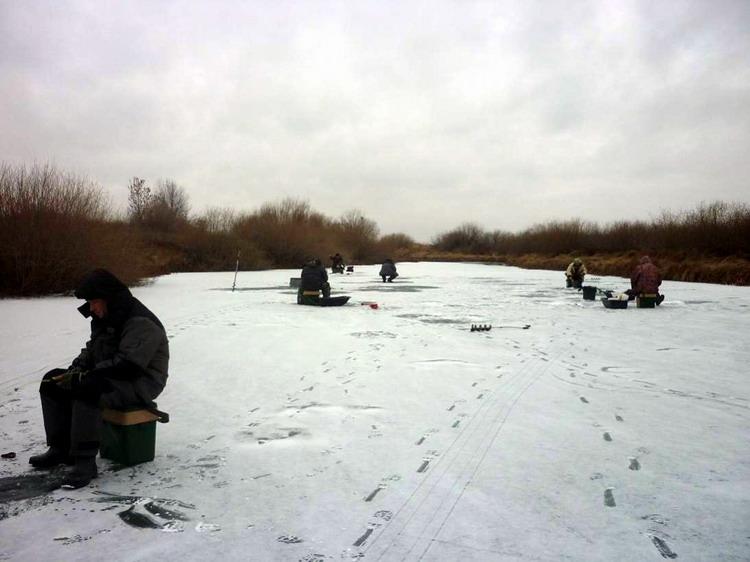 Рыбаки зимой ловят плотву