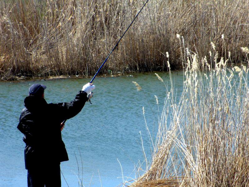 Весенняя ловля плотвы на удочку
