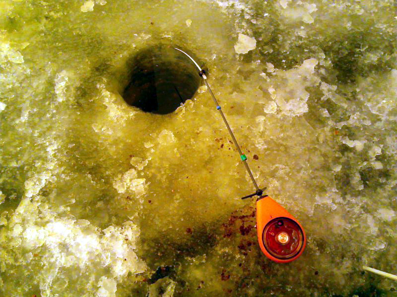 Зимняя удочка для ловли плотвы