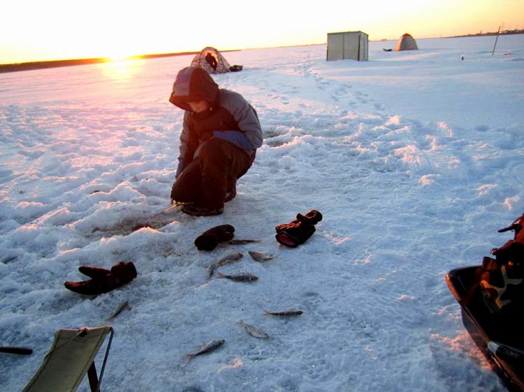 Рыбачек и плотва зимой