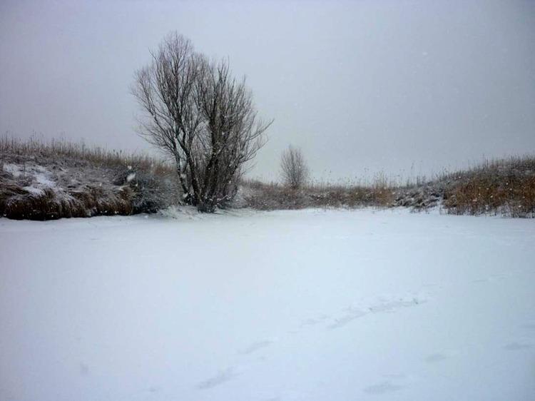 река в снегу