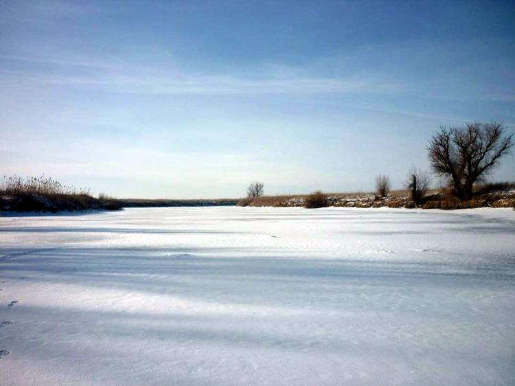 Заснеженный пруд