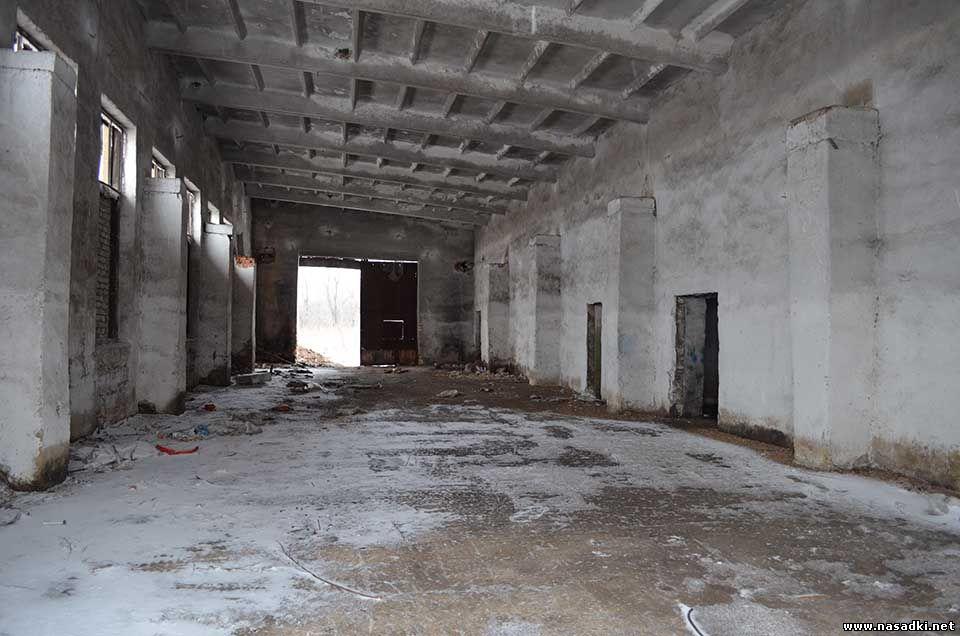 Будущее производство опарыша в Липецке - 2014 год