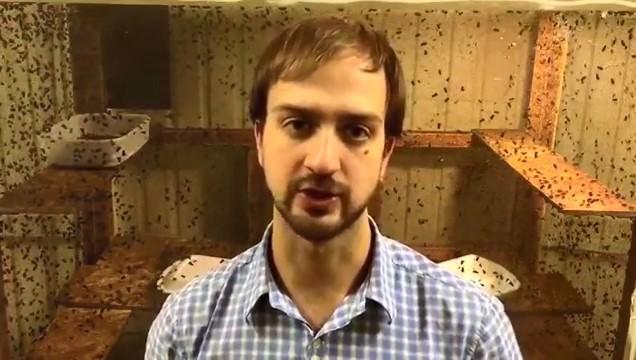 Истомин Алексей Игоревич - человек выдающий себя за автора технологии опарыша