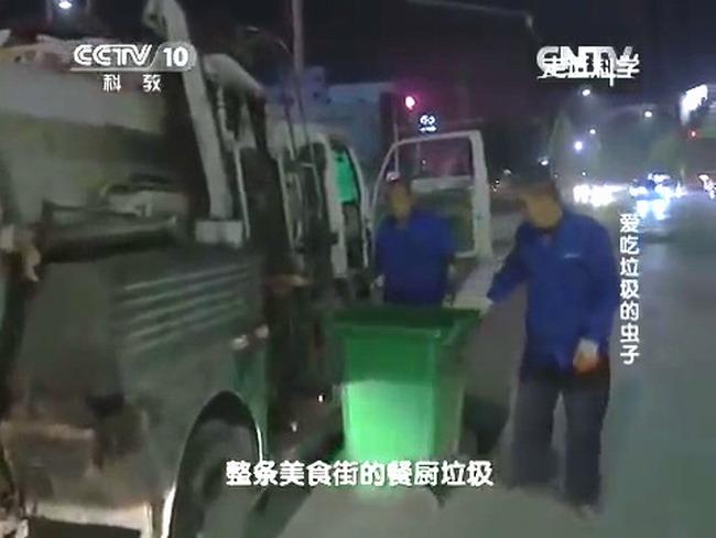 Погрузка отходов для разведения черной львинки