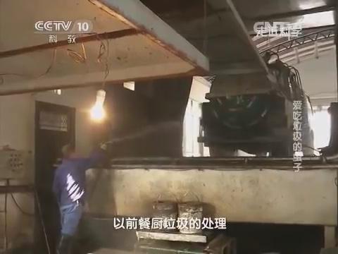 Разгрузка отходов на заводе по разведению черной львинки